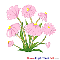 Field Flowers download Clipart Flowers Cliparts