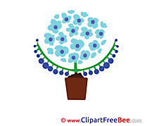 Flower free Cliparts Flowers