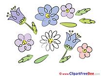 Flowering Flowers free Images download