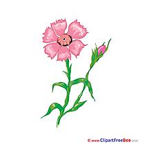 Flowering Pics Flowers Illustration