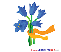 Flowers free Images download