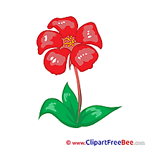 Red Flowers printable Images