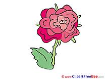 Rose printable Illustrations Flowers