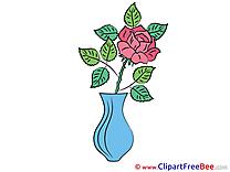Rose Vase Pics Flowers free Image
