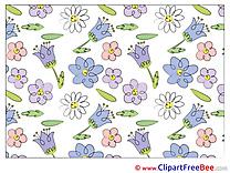 Wallpaper Pics Flowers Illustration