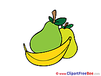 Fruits free Illustration download