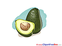 Avocado Clipart free Image download