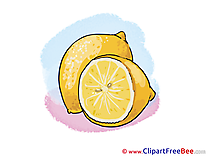 Lemon download printable Illustrations
