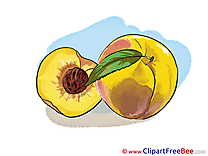 Peaches Clipart free Image download