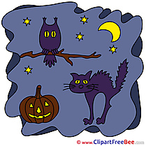 Branch Moon Cat Night Clipart Halloween Illustrations