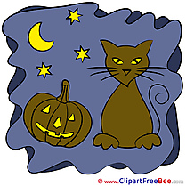 Night Cat Pumpkin Halloween Illustrations for free