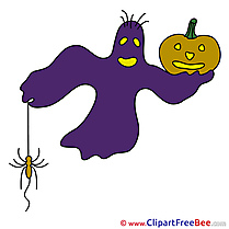 Spook Spider Pumpkin Halloween free Images download