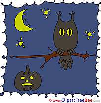 Stars Moon Night Owl Halloween Clip Art for free