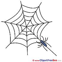 Web Spider Pics Halloween free Image
