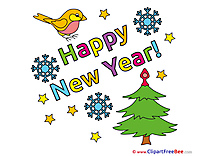 Bird Tree New Year free Images download
