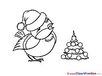 Bullfinch Pics New Year Illustration