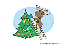 Ladder Deer New Year free Images download