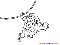Little Monkey New Year free Images download