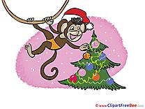 Monkey Tree Pics New Year free Cliparts