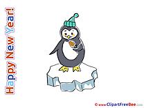 Penguin free Illustration New Year