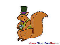 Squirrel download New Year Illustrations
