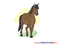 Animal Clipart Horse free Images