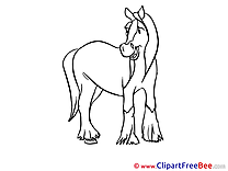 Coloring Horse Clip Art for free
