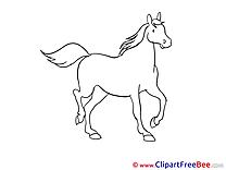 Coloring Horse Illustrations for free