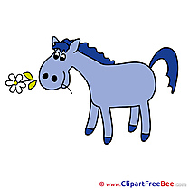 Flower Pics Horse Illustration