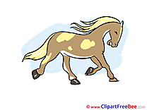 Free Cliparts Horse