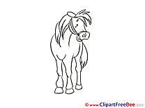 Free Illustration Horse