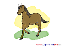 Grass free Illustration Horse