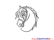 Head printable Illustrations Horse