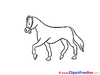 Horse free Images download