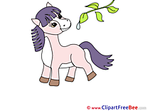 Little Pony Horse free Images download