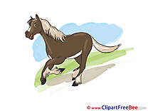 Nature Pics Horse Illustration