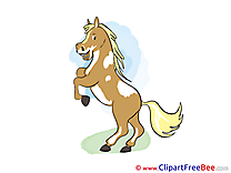 On hind Legs download Horse Illustrations