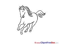 Pics Horse Illustration