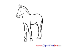 Printable Coloring Horse Images