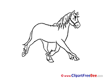 Stallion printable Illustrations Horse