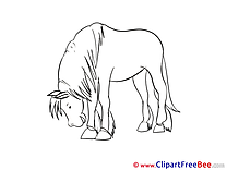 Tired Pics Horse Illustration
