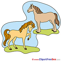 Two Horses Cliparts  for free