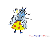 Fly free Illustration download
