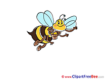 Flying Bee free Cliparts for download