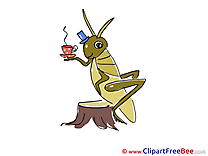 Grasshopper Tea free printable Cliparts and Images