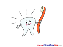 Toothbrush Tooth printable Illustrations for free