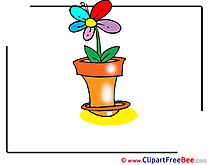 Flower Images download free Cliparts
