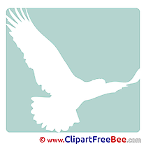 Eagle Bird Pictogrammes Illustrations for free