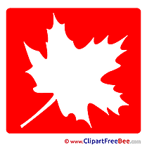 Maple Leaf Pics Pictogrammes free Image