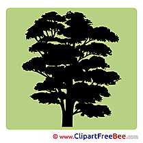 Tree Pics Pictogrammes Illustration